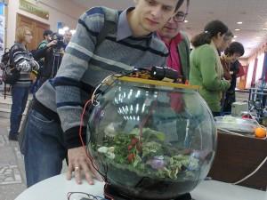 Горноалтайцы с аквариумом